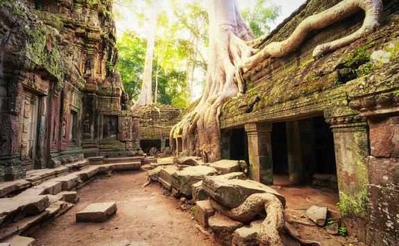 Angkor Wat Cambodia Ta Prohm Khmer Temple