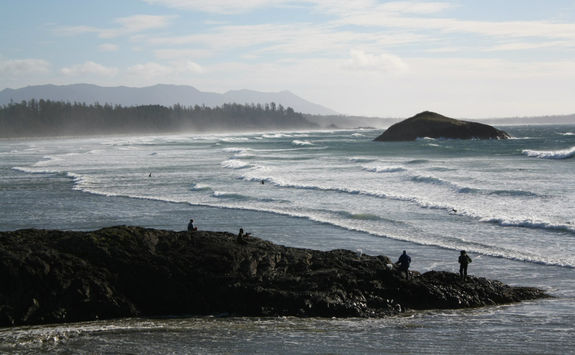 Surfing waves in Tofino