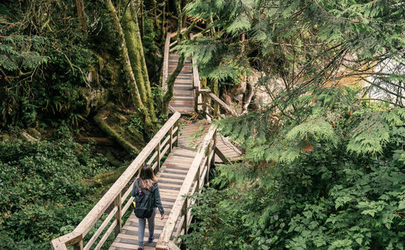 Hiking trail in the Pacific Rim National Park Reserve