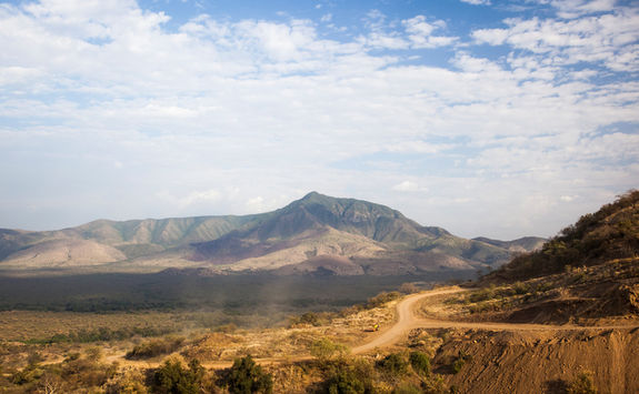 mago np landscape