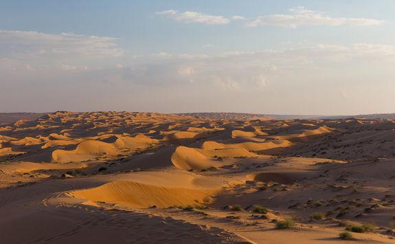 Wahiba Sands view