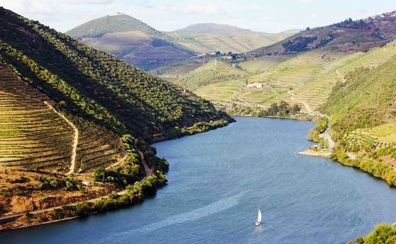 Sailing on the Douro valley