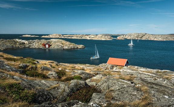 Sailboat sea landscape