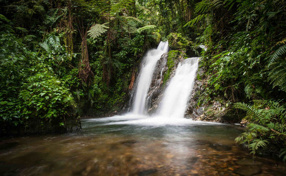 Waterfall in Ugandan forest