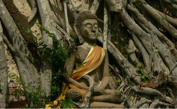 Gaya Island Buddha