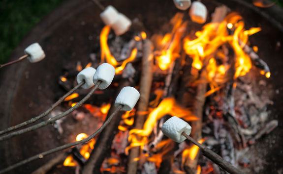 Marshmallow Camp