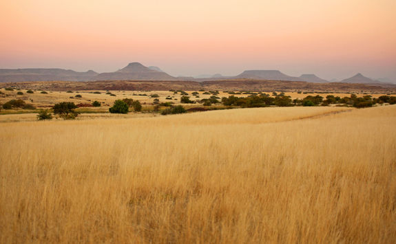 palmwag landscape