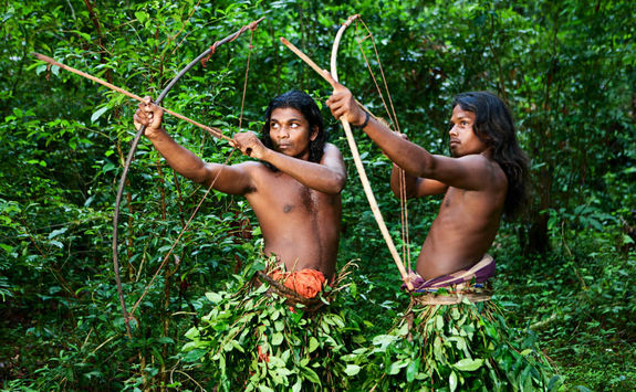 Vedda people forest