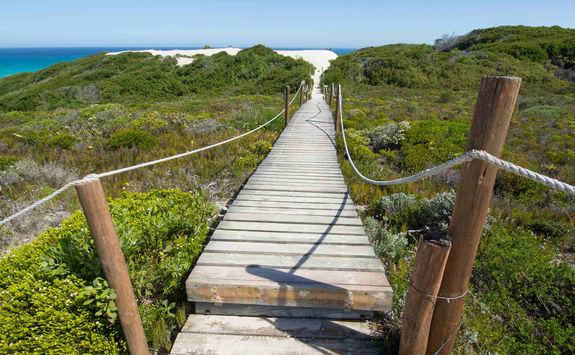 Wooden walkway Hoop reserve