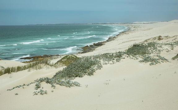Beach De Hoop reserve