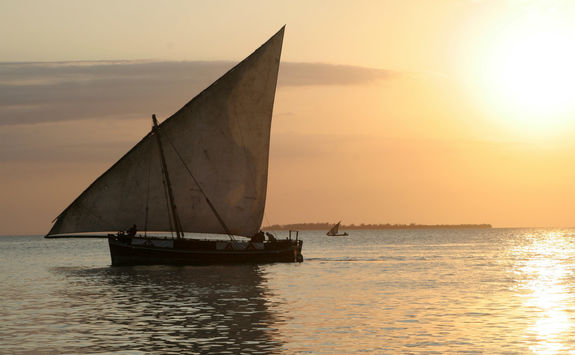 dhow saling boat