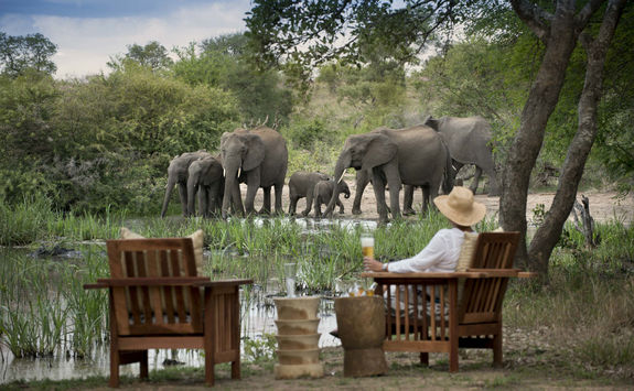 Tanda Tula waterhole view