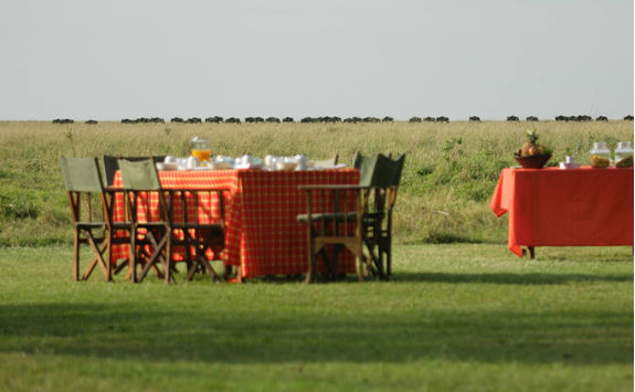 Breakfast with Wildebeest in the distance