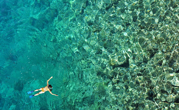 Reef snorkelling in Zanzibar