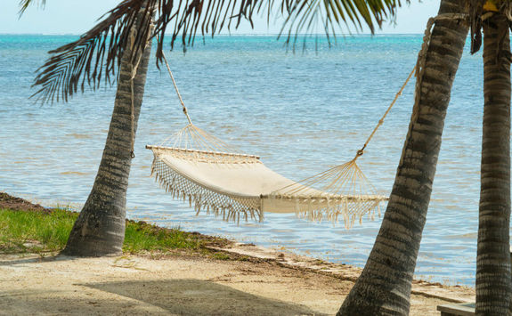 Hammock on a beach
