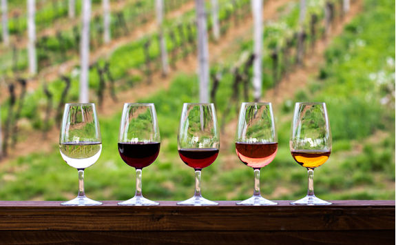Glasses with red, pink and white wine