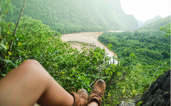 on the top tropical forest