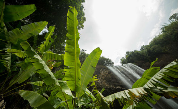 waterfall in laos and tropical forest