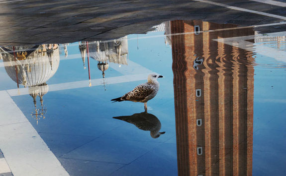 reflection of st mark bell tower on water of the town square