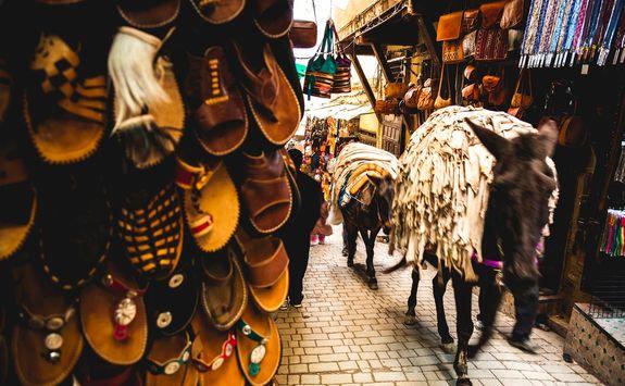 Donkey in Fez street