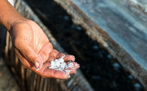 male workers hand with sea salt