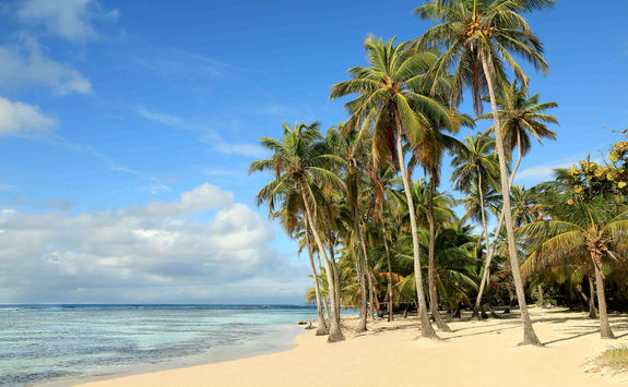 White sand beach on the south coast of Antigua