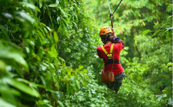 Zipline tour in the Antiguan rainforest