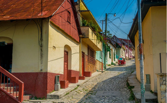 colourful street flores