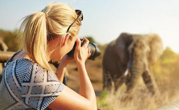 Woman capturing an elephant