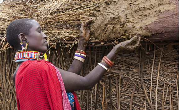 Maasai woman buiding hut putting cows dung on roof