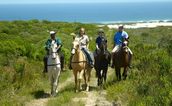 Horse riding on the reserve