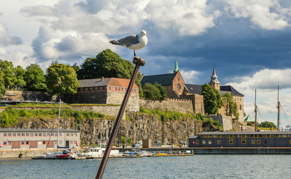 Seagull and Akershus fortress