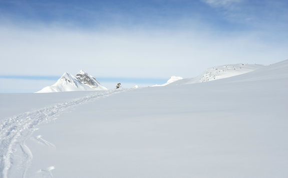 Ski tracks left by back country skiers in Jotunheimen