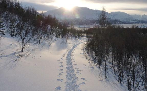 Mountainous landscape in Norway