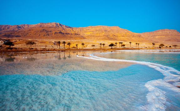 Dead Sea with Palm Trees in Jordan