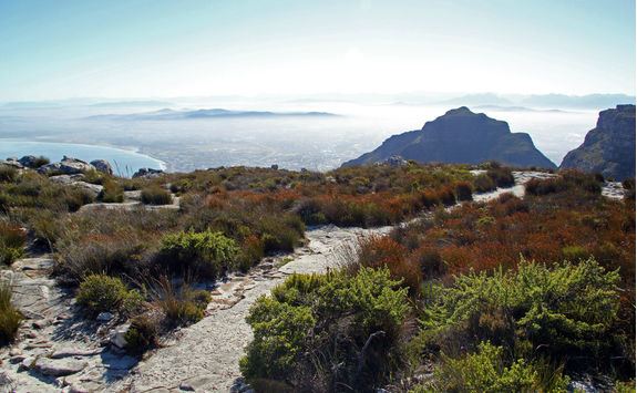 Table Top Mountain pathway