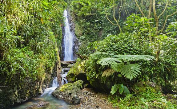 Au Coin Waterfall