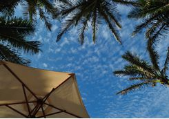 Sunny skies in Durban