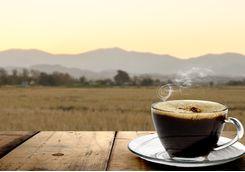 Morning coffee on safari