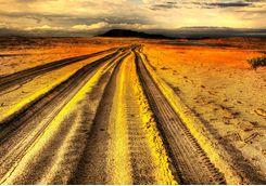 Beach tracks, KwaZulu-Natal