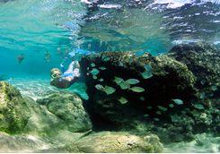Snorkelling off the coast of Thonga Beach Lodge