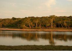 Lake in Maputaland