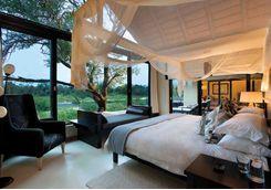 Room at Lion Sands