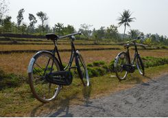 Cycling in Central Java