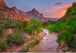 A River in the Zion National Park