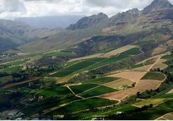 cape wine valley