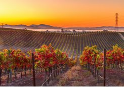 The sunset over Napa Valley