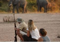 Walking Safari in Ruaha