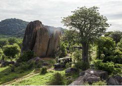 Game Drive, Tanzania
