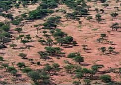 okonjima reserve